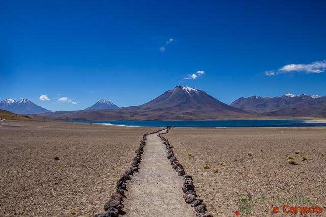Roteiro de 11 dias no Chile-LagunaMiscanti