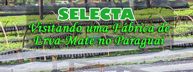 Fábrica-da-Selecta-no-Paraguai---terere-e-erva-mate