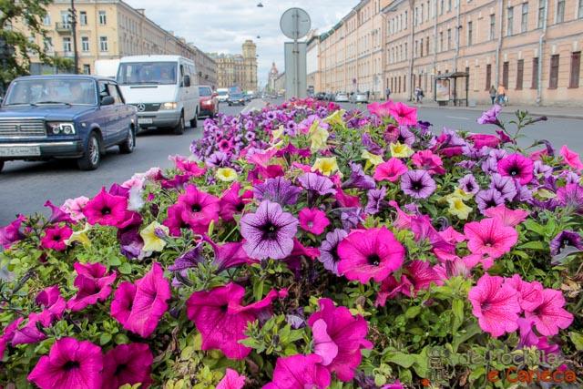 lugares imperdíveis para conhecer em São Petersburgo-flores