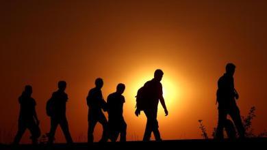 Photo of دور الهجرة الدولية في خلق التوازن في دول المنشأ ودول الاستقبال