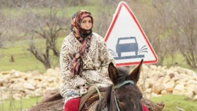 Photo of واقع وآفاق المرأة الريفية ومساهمتها في التنمية المحلية بمنطقة وادي سوف