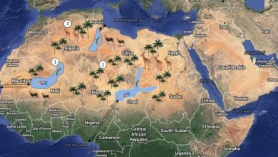 Photo of Mobilizations in Western Sahara: Struggles  Around Natural Resources
