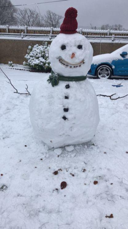 Snowjo