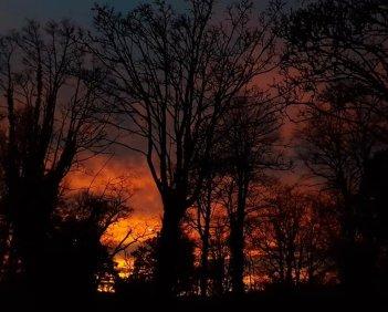 sunset 3.jpg 4