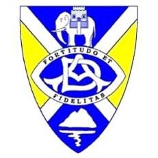 Academy badge
