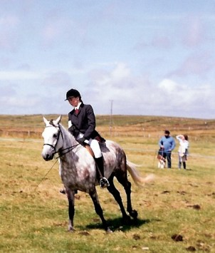 Connemara Lucy McEvilly at Claddaghduff Pony Show