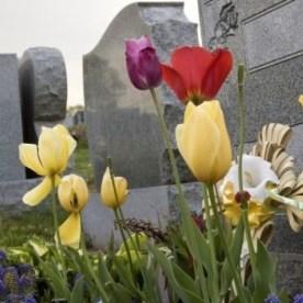 funerals 22