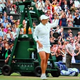 Wimbledon 7