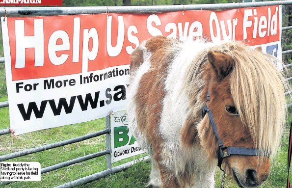 LOCAL GOVERNMENT: PONY PROBLEM IS IN THE WAY OF DIVERSION AROUND DUMBUCK JUNCTION ON THE A82