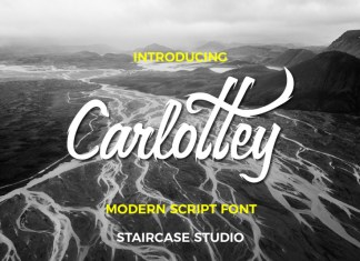 Carlottey Font