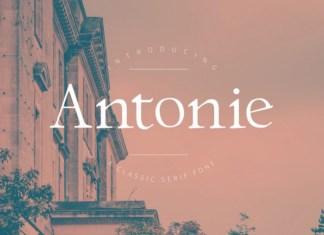 Antonie Font