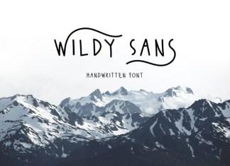 Wildy Sans Font