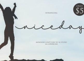 Niceday Font