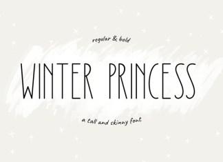 Winter Princess Font
