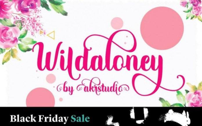 Wildaloney Font