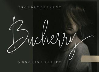 Bucherry Font
