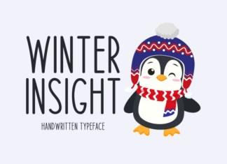 Winter Insight Font