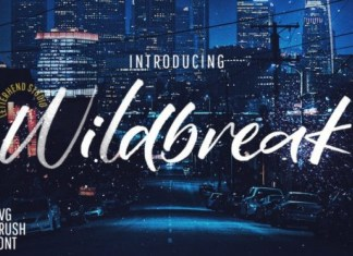 Wildbreak Font