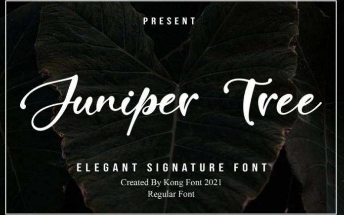 Juniper Tree Font