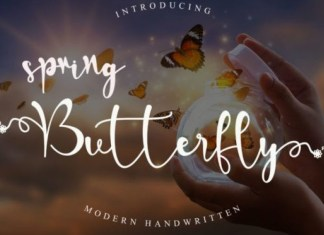 Spring Butterfly Font