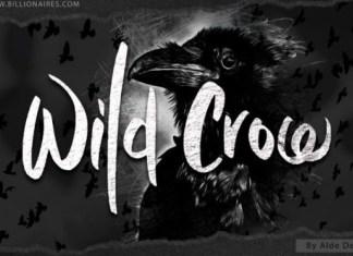 Wild Crow Brush Font