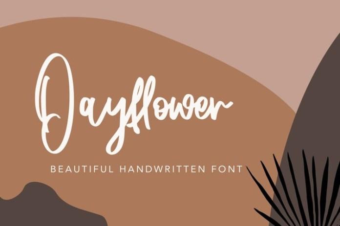 Dayflower Script Font