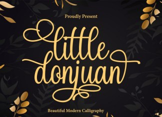 Little Donjuan Calligraphy Font
