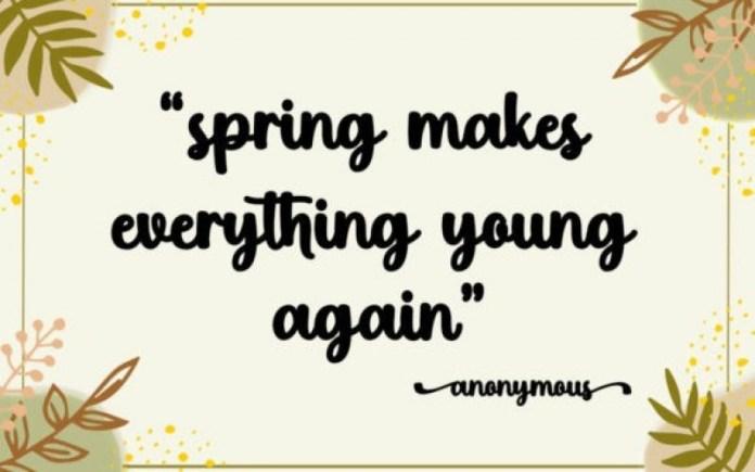 Cute Spring Font Duo