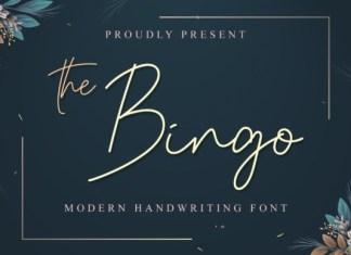 The Bingo Handwritten Font