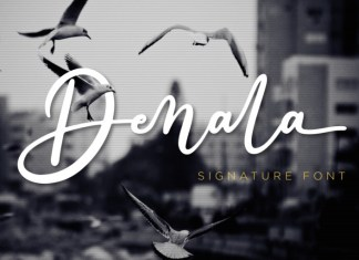 Denala Script Font