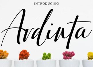 Ardinta Script Font