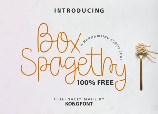 Box Spagethy Handwritten Font