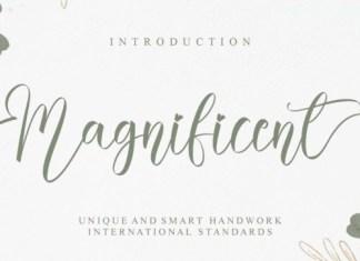 Magnificent Script Font