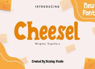 Cheesel Display Font