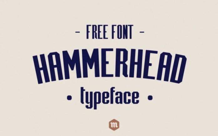 Hammerhead Sans Serif Font