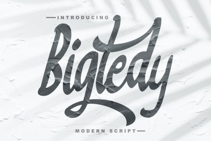 Bigtedy Script Font