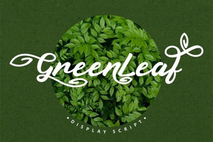 Greenleaf Calligraphy Font