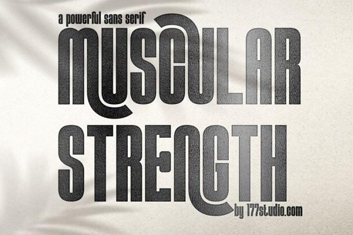 MUSCULAR STRENGTH Sans Serif Font