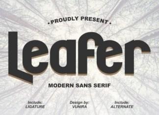 Leafer Display Font