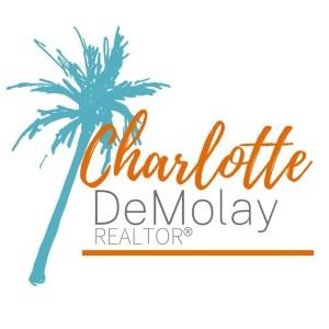 Charlotte DeMolay Realtor Logo with Palm Tree