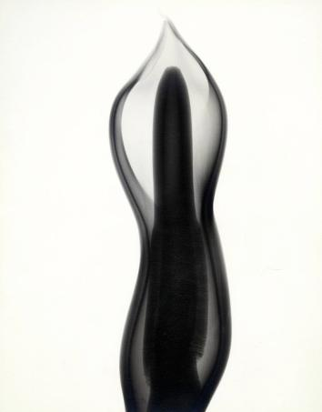 """""""Philodendron,"""" 1938, vintage gelatin silver print, 11 3/8 x 9 inches. All imagery courtesy Joseph Bellows Gallery."""