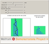 """Two-Color Left/Right Mobile Automata"" from the Wolfram Demonstrations Project"