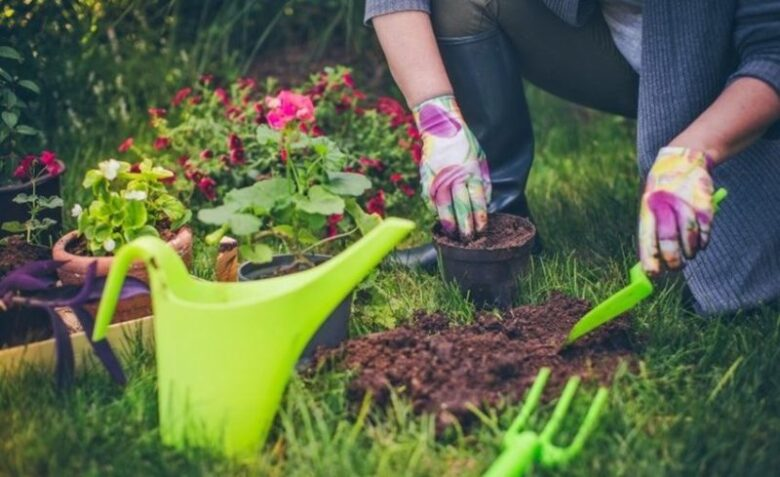 What Are The Most Essential Things To Add To Your Garden