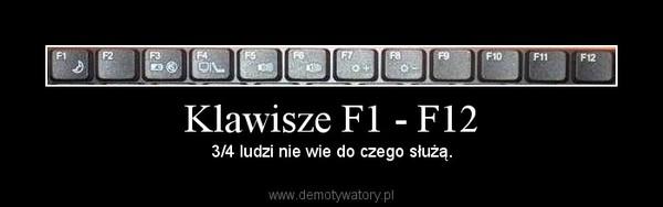 Klawisze F1 - F12 – Demotywatory.pl