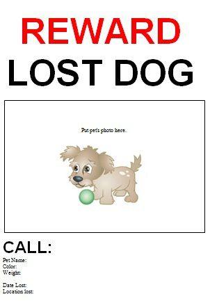 Lost Template. Lost U0026Amp Found Cat Website In America Lost Pet
