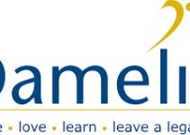 Download Damelin Prospectus 2022 PDF