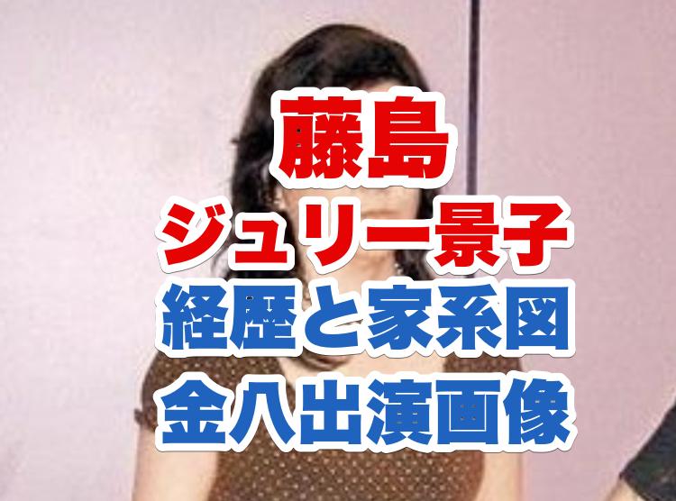 藤島ジュリー景子の画像
