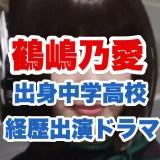 鶴嶋乃愛の画像