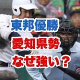 甲子園で東邦高校の打者が打つ瞬間画像
