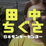 田中ちぐさの顔画像